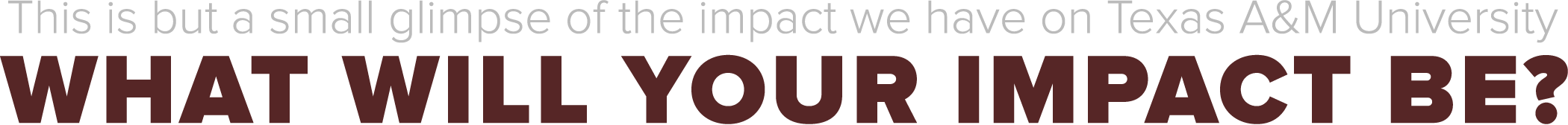 This is but a small glimpse of the impact we have on Texas A&M University. What will your impact be?