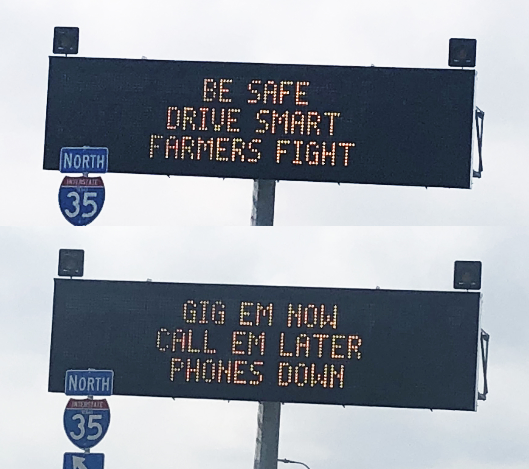 TxDOT's Aggies Spread Good Bull Safety Messages